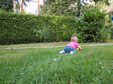 Baby krabbelt im Garten weg